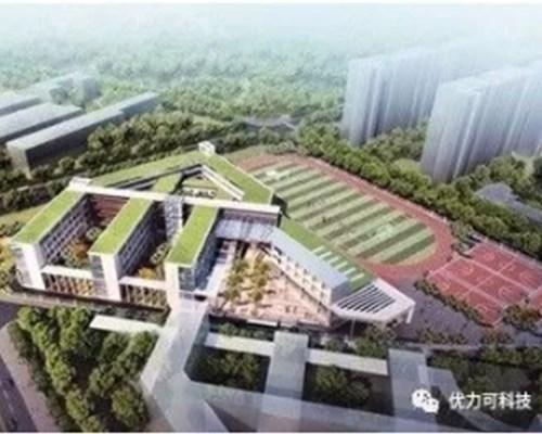深圳龙岗区坪西区九年一贯制学校